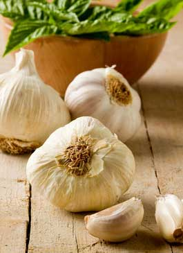 Garlic is a rich source of sulfur and packed with health benefits.
