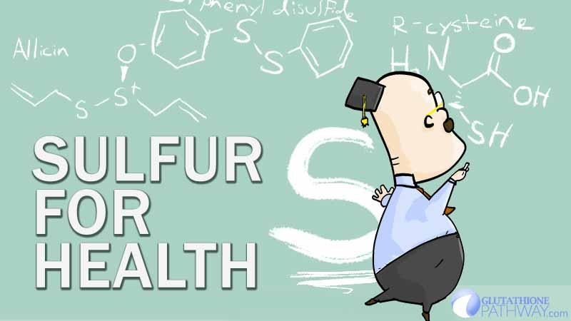 The top health foods tend to have sulfur in common