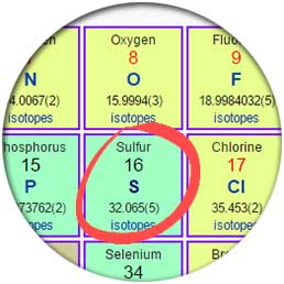 Oxygen is in the same family as Sulfur on the periodic table of elements.