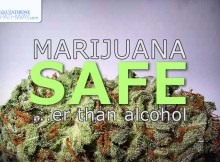 Study that shows Marijuana is actually significantly safer than alcohol from a mortality perspective