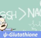 ψ-Glutathione as an alternative to NAC for acetaminophen overdose